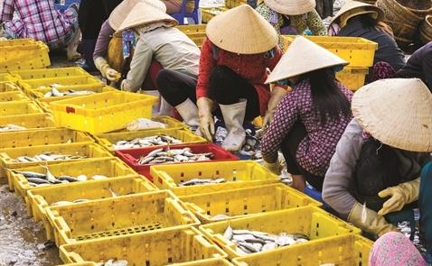 Chính sách thuế BAT: Mối lo của xuất khẩu Việt