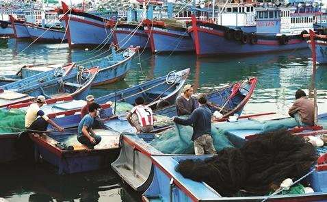 Ngành thủy sản có thể trụ vững trong năm 2017?