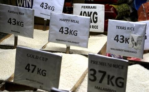 Philippines muốn nhập 250 nghìn tấn gạo từ Việt Nam, Thái Lan