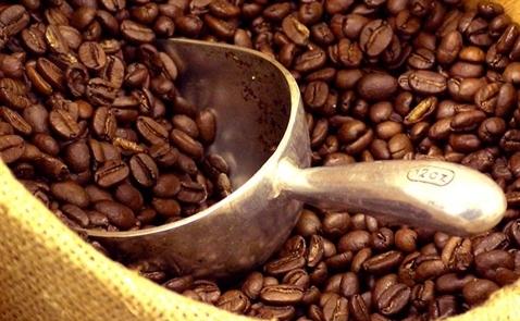 Bloomberg: Tổng công ty cà phê sắp tiến hành IPO