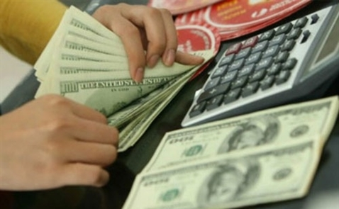BVSC dự báo tỷ giá sẽ biến động 3% trong năm nay