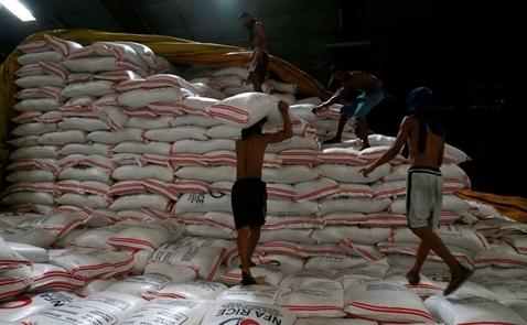 Giá gạo Việt Nam chạm đỉnh 11 tháng