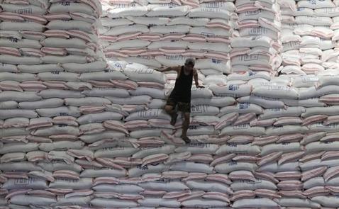 Giá gạo Việt Nam lên cao nhất gần hai năm rưỡi
