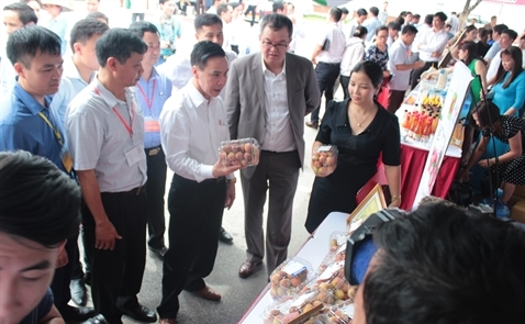 Central Group xuất trái vải Việt Nam sang Thái Lan