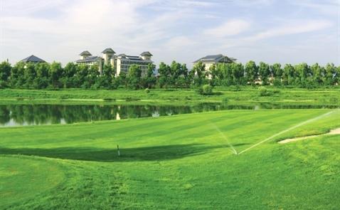 Golf lỗ, đại gia kiếm gì trong các lỗ golf?