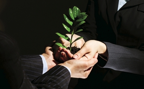 Seedcom thận trọng gieo giống