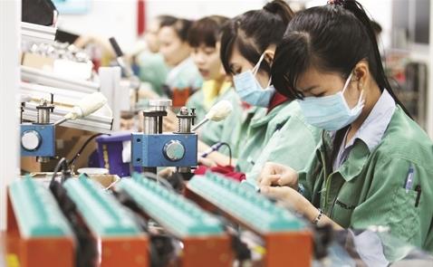 Vì sao doanh nghiệp Việt luôn sợ thất bại?