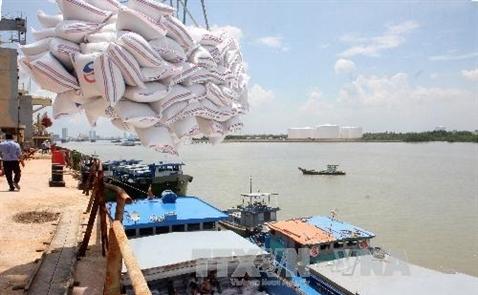 Doanh nghiệp Việt trúng thầu cung cấp 175.000 tấn gạo cho Philippines