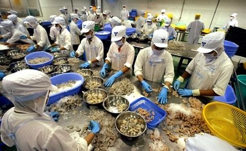 Mỹ chính thức tăng thuế chống bán phá giá với tôm Việt Nam