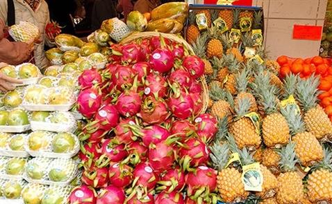 Xuất khẩu rau quả sang Trung Quốc mang về 1,79 tỷ USD