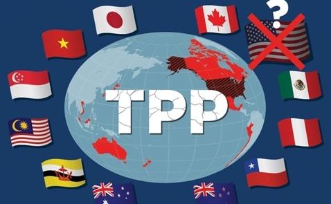 Không cần Mỹ, TPP vẫn tiếp tục tiến tới