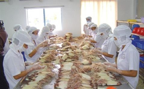 Mực tươi và đông lạnh Việt Nam đang chiếm lĩnh thị trường Israel