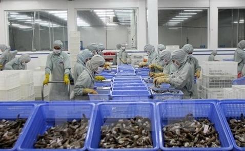 Việt Nam là nhà cung cấp tôm lớn nhất của Canada