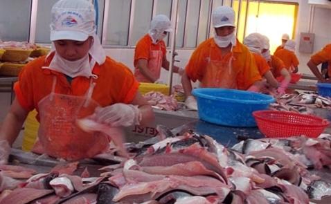 Việt Nam khiếu nại lên WTO việc Mỹ áp thuế với cá phi lê xuất khẩu
