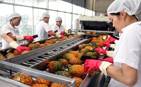 Xuất khẩu rau quả tháng 1 tăng mạnh