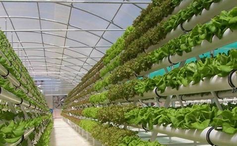 23 startup công nghệ nông nghiệp vào chung kết MATCh 2018
