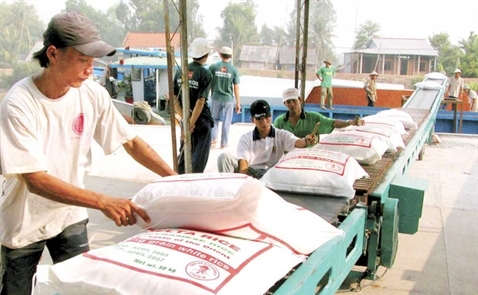 Việt Nam trúng thầu 300.000 tấn gạo xuất sang Indonesia
