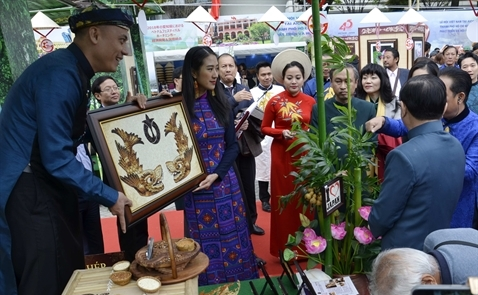 Tranh gạo Quỳnh Vy lần đầu xuất hiện tại thành phố Aichi