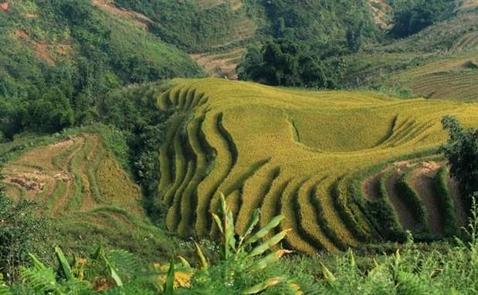 CNN giới thiệu 10 điểm đến đẹp nhất Việt Nam