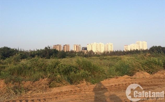 Sunny Island vẫn đặt cọc 2.800 tỉ cho dự án của Quốc Cường Gia Lai