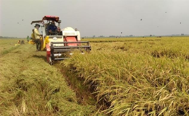 Chính phủ ưu tiên doanh nghiệp đầu tư vào nông nghiệp
