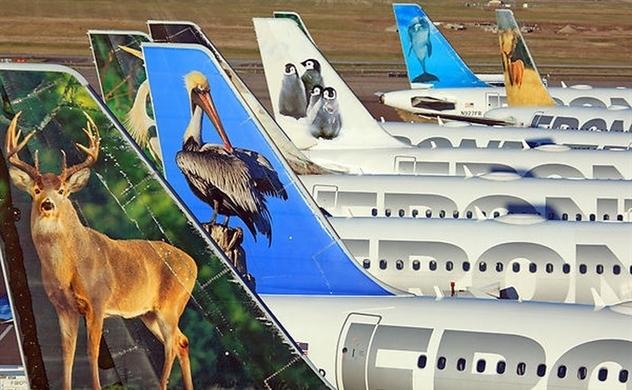 Tìm hiểu logo của 15 hãng hàng không lớn trên thế giới