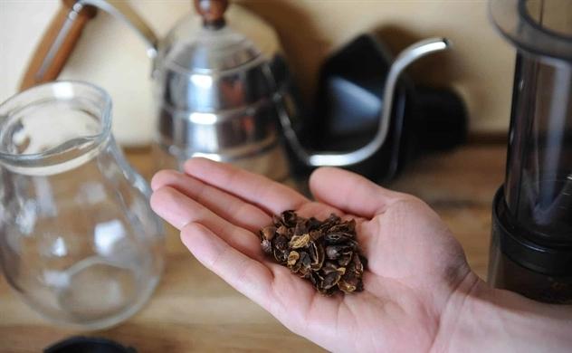 Khi vỏ cà phê đắt gấp 5 lần hạt cà phê