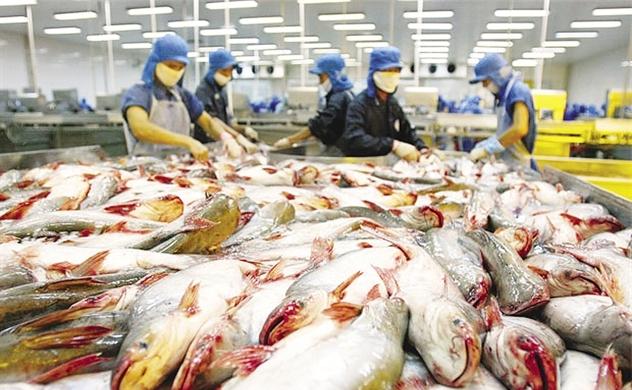Thị trường nào nhập khẩu cá tra Việt Nam nhiều nhất?