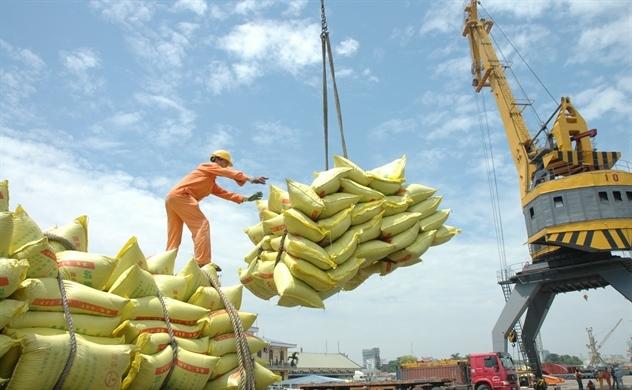 Giá gạo xuất khẩu của Việt Nam cao nhất trong 4 năm qua