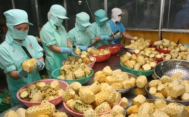 Đài Loan tìm cơ hội đầu tư vào nông sản Việt Nam