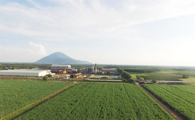 Giãn ATIGA: Cú hích thay đổi cục diện ngành mía đường?