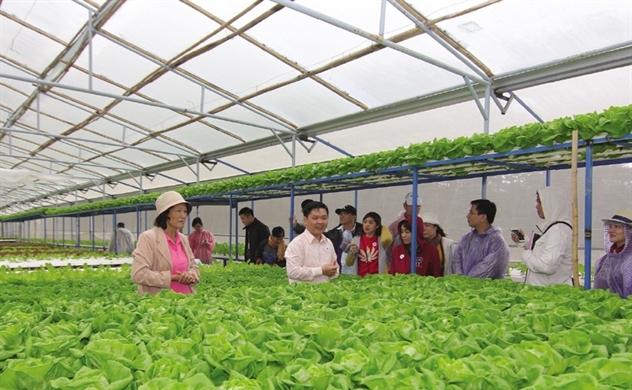 Xuất khẩu rau quả hướng tới con số 10 tỷ USD