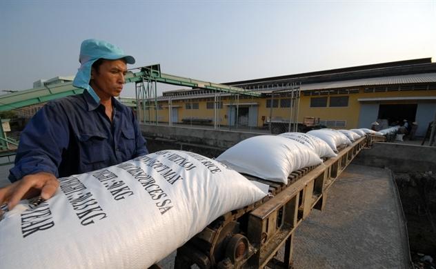 Trung Quốc áp thuế: Gạo Việt giảm cả lượng lẫn giá