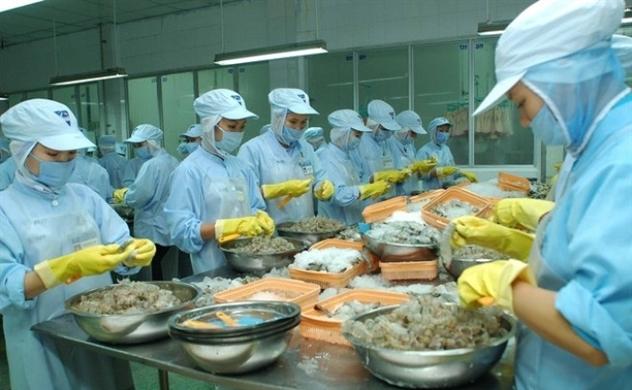 Thủy sản Hoàng Long bắt đầu triển khai ERP