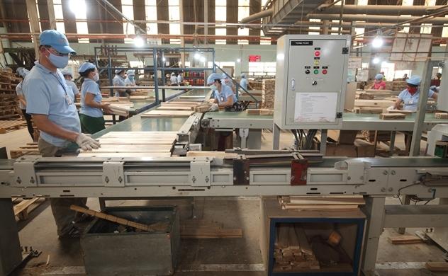 Đạt mục tiêu 8 tỉ USD, Việt Nam trở thành trung tâm xuất khẩu gỗ của thế giới?