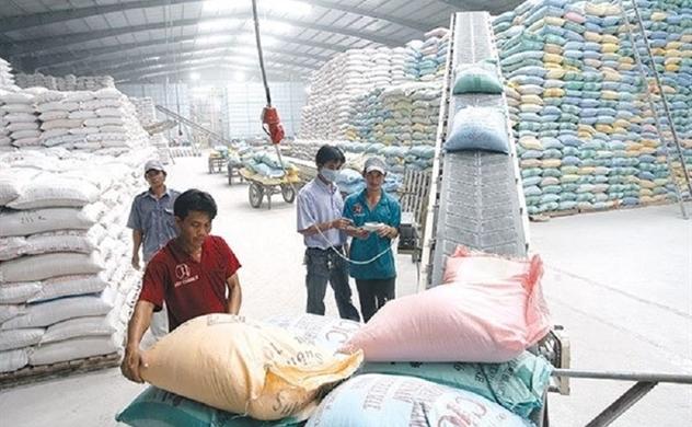 Ngày 1.10, áp quy định mới về kinh doanh xuất khẩu gạo