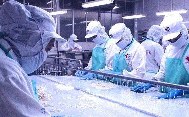 Seaprimexco Vietnam luôn hướng đến sự hoàn thiện