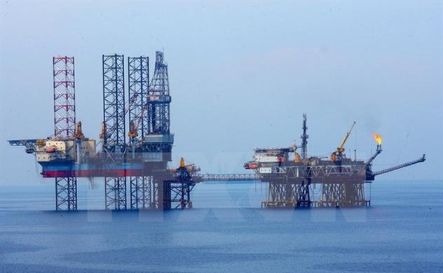 Lợi nhuận tăng, Petrolimex đề nghị giãn thời hạn thoái vốn đến năm 2019-2020