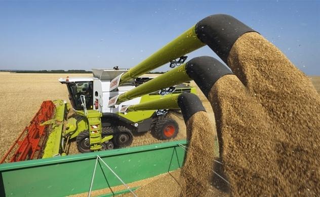 Những phát kiến nông nghiệp khiến thế giới bất ngờ