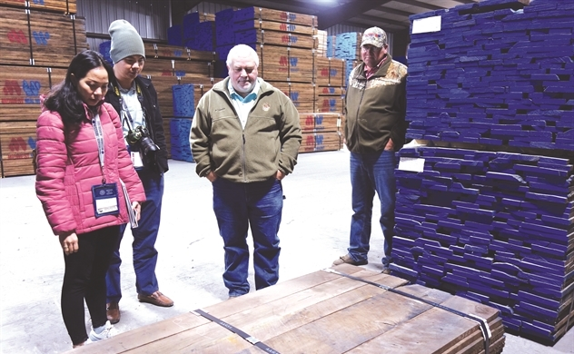 Vướng Trung Quốc, gỗ Mỹ chuyển hướng sang Việt Nam