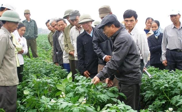 Gia tăng giá trị cho nông nghiệp từ mô hình kinh doanh bền vững