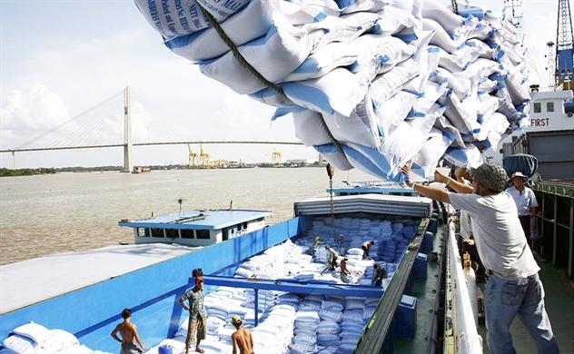 Trung Quốc sắp đánh thuế nhập khẩu gạo Việt lên 50%