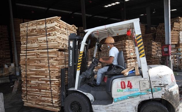 Gỗ lậu từ Campuchia gây rủi ro cho ngành gỗ Việt Nam