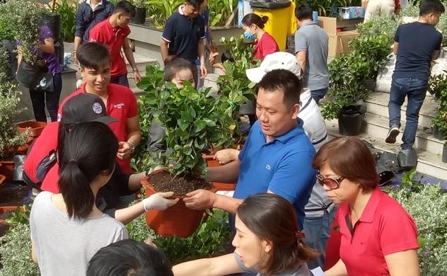 Quỹ Ban công Xanh tặng 1.000 cây xanh cho người dân TP.HCM