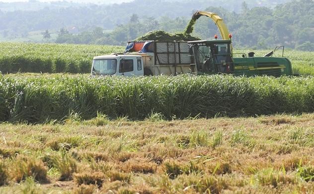 M&A Việt khởi động với thương vụ 135 triệu USD