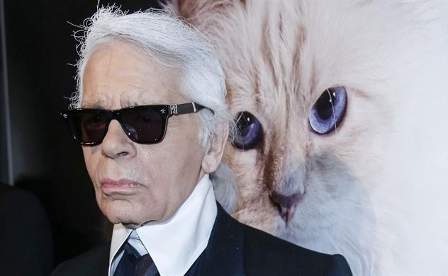 Choupette sẽ là cô mèo giàu nhất thế giới?