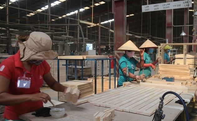 Gỗ và sản phẩm gỗ: Đã đến lúc thúc đẩy tăng trưởng về chất