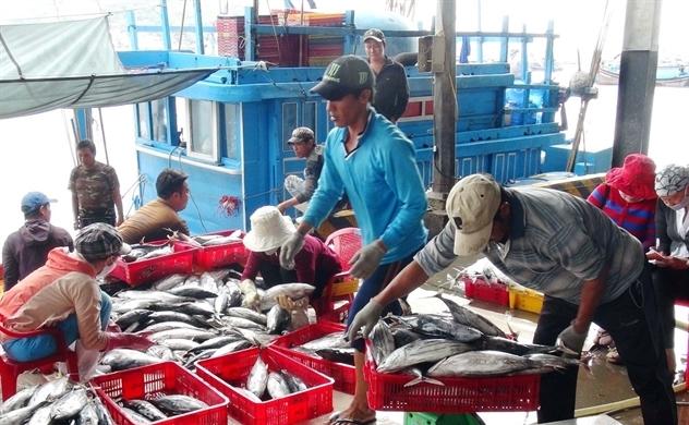 Thuỷ sản Việt Nam hồi hộp chờ phán quyết từ châu Âu