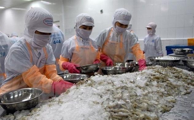 Việt Nam là nhà cung cấp tôm đông lạnh lớn nhất của Nhật Bản