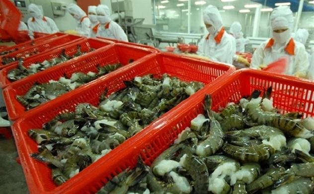 Thị trường Mỹ: Tôm tăng trưởng mạnh và cá tra vẫn khó